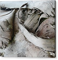 Ebb And Flow Acrylic Print by Donna McLarty