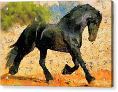 Ebony The Horse - Abstract Expressionism Acrylic Print