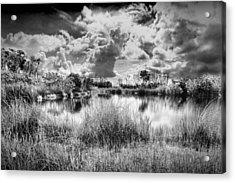 Everglades Lake 5678bw Acrylic Print