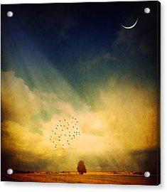 Echo Of A Sigh Acrylic Print by Philippe Sainte-Laudy