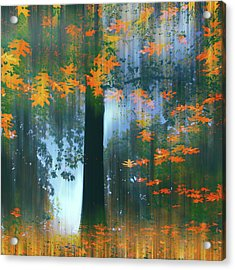 Acrylic Print featuring the photograph Echoes Of Autumn by Jessica Jenney