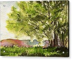 Echoes Of Summer Acrylic Print by Diane Ellingham