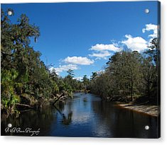 Acrylic Print featuring the photograph Econlockhatchee River by Barbara Bowen