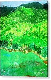 Ecuador Countryside Acrylic Print