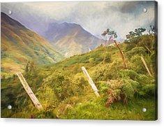 Ecuadorian Mountain Forest Acrylic Print