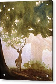 Edge Of The Forrest Acrylic Print by Marilyn Jacobson