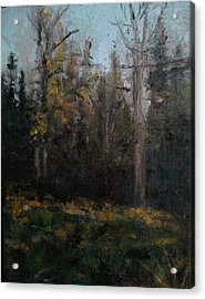 Edge Of The Woods #1 Acrylic Print by Brian Kardell