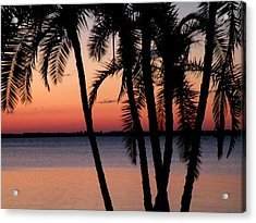 Acrylic Print featuring the photograph Edison Sunset by Rosalie Scanlon