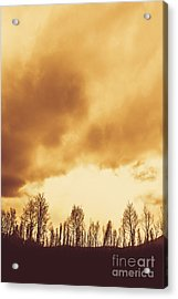 Eerie Fields In Silhouette Acrylic Print by Jorgo Photography - Wall Art Gallery