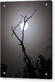 Eerie Moon Acrylic Print