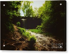 Acrylic Print featuring the photograph Eerie Path At Wequiock Falls by Mark David Zahn