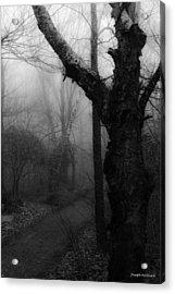 Eerie Stillness Acrylic Print