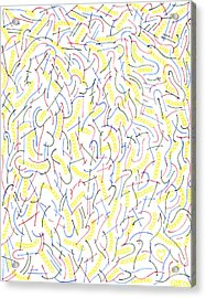 Effervescence Acrylic Print by Steven Natanson