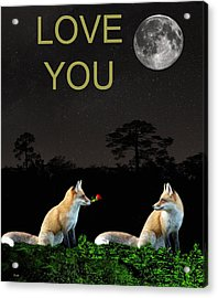 Eftalou Foxes Love You Acrylic Print