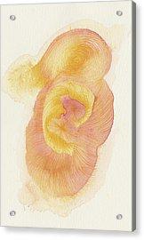 Egg - #ss16dw015 Acrylic Print by Satomi Sugimoto