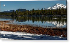 Acrylic Print featuring the photograph Egret At Lava Lake by Cat Connor
