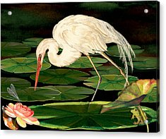Egret Fishing In Lily Pads Acrylic Print by Anne Beverley-Stamps