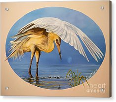 Flying Lamb Productions                  Egret Fishing Acrylic Print