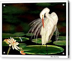 Acrylic Print featuring the painting Egret Pruning In Lily Pads by Anne Beverley-Stamps