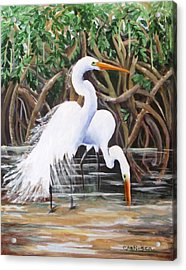 Egrets And Mangroves Acrylic Print