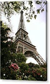 Eiffel Tower Acrylic Print by Joe Bonita