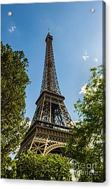 Eiffel Tower Through Trees Acrylic Print