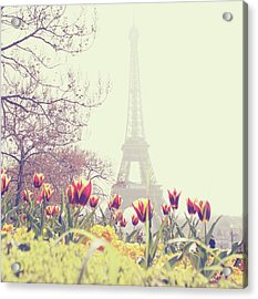 Eiffel Tower With Tulips Acrylic Print by Gabriela D Costa