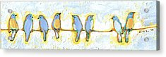 Eight Little Bluebirds Acrylic Print