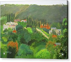 Acrylic Print featuring the painting Ein Hod View by Linda Feinberg