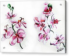 Either Orchid Acrylic Print by Amanda  Sanford