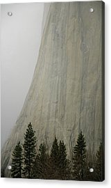 El Capitan, Yosemite National Park Acrylic Print by André Leopold