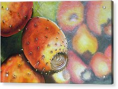 El Mercado Acrylic Print by Maribel Garzon