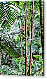 El Yunque Rainforest 3 Acrylic Print by Carey Chen