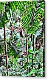 El Yunque Rainforest 5 Acrylic Print by Carey Chen