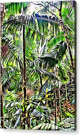 El Yunque Rainforest 6 Acrylic Print by Carey Chen