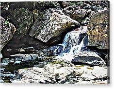 El Yunque Stream Acrylic Print by Carey Chen