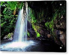 El Yunque Waterfall Acrylic Print by Thomas R Fletcher
