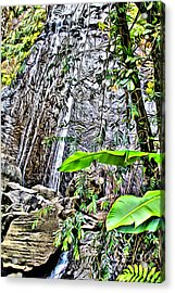El Yuque Waterfall Acrylic Print by Carey Chen