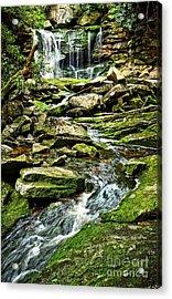 Elakala Falls At Blackwater Falls State Park Acrylic Print