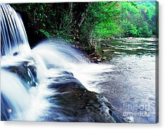 Elbow Run Flowing Into Williams River Acrylic Print by Thomas R Fletcher