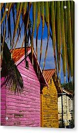 Electric Avenue Acrylic Print by Skip Hunt