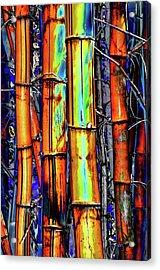 Electric Bamboo 3 Acrylic Print