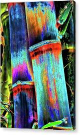 Electric Bamboo 5 Acrylic Print