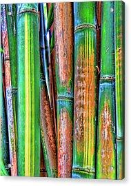Electric Bamboo 7 Acrylic Print