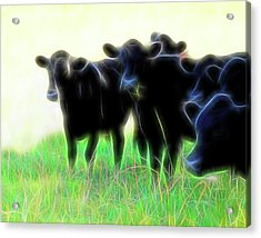 Acrylic Print featuring the photograph Electric Cows by Ann Powell
