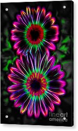 Electric Duo Acrylic Print by Kasia Bitner