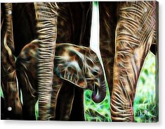 Electric Elephant Wall Art Collection Acrylic Print by Marvin Blaine