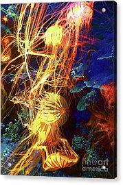 Electric Jellies Acrylic Print by Robert Ball