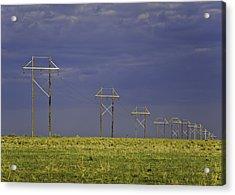 Electric Pasture Acrylic Print