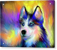 Electric Siberian Husky Dog Painting Acrylic Print by Svetlana Novikova